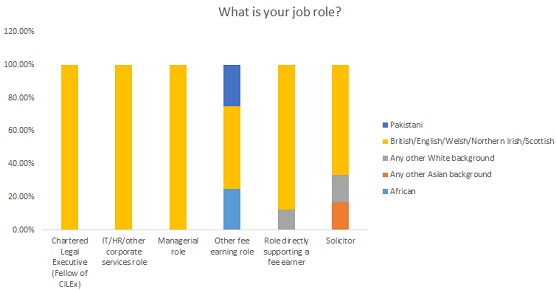 What is your ethnic group by job role