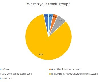 What is your ethnic group